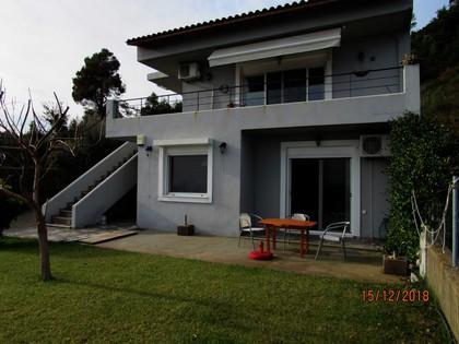 Μονοκατοικία 160τ.μ. πρoς αγορά-Κύμη » Πλατάνα