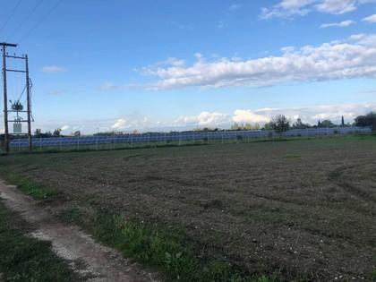 Αγροτεμάχια 11.000τ.μ. πρoς αγορά-Μόβρη » Σαγαίικα