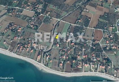 Αγροτεμάχια 2.500τ.μ. πρoς αγορά-Αλεξανδρούπολη » Δίκελλα