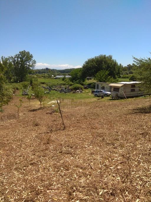 Αγροτεμάχια 8.500τ.μ. πρoς αγορά-Ζάλογγο » Νέα σινώπη
