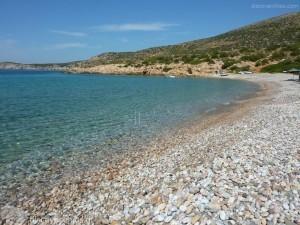 Άλλο 20.000 τ.μ. πρoς ενοικίαση, Ν. Χίου, Χίος-thumb-3
