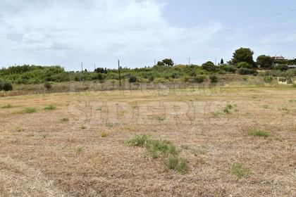 Οικόπεδο 750τ.μ. πρoς αγορά-Κόρινθος