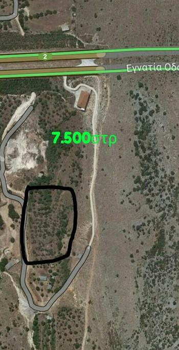 Αγροτεμάχια 7.500τ.μ. πρoς αγορά-Μαργαρίτι » Μεσοβούνι