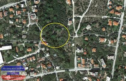 Οικόπεδο 3.733τ.μ. πρoς αγορά-Καβάλα » Παληό