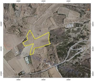 Αγροτεμάχια 28.500τ.μ. πρoς ενοικίαση-Θήβα » Κέντρο