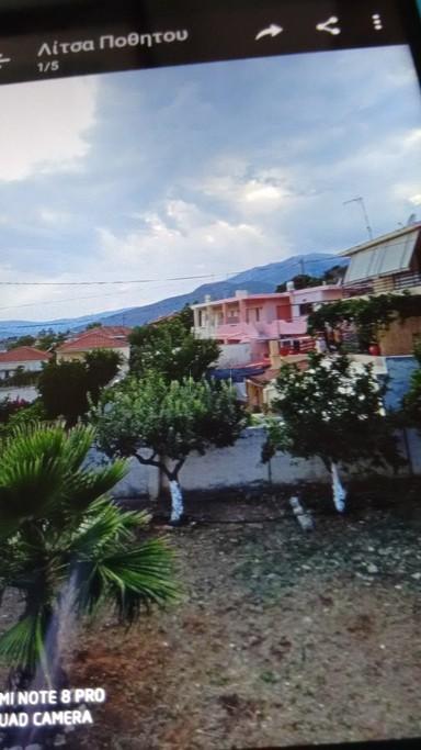 Μονοκατοικία 110τ.μ. πρoς αγορά-Θίσβη » Δομβραίνα