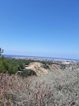 Οικόπεδο 5.200τ.μ. πρoς αγορά-Ηράκλειο κρήτης