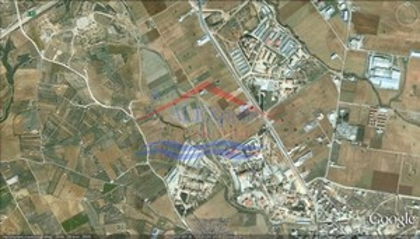 Αγροτεμάχια 6.000τ.μ. πρoς αγορά-Αλεξανδρούπολη » Κίρκη