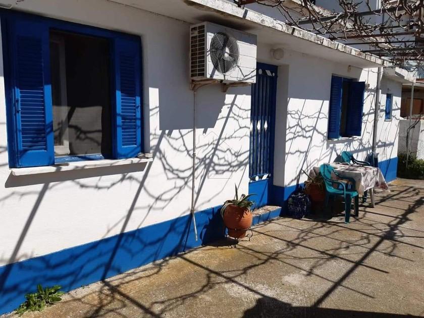 Μονοκατοικία 35τ.μ. πρoς αγορά-Σκόπελος » Γλώσσα