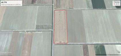 Αγροτεμάχια 100.330τ.μ. πρoς ενοικίαση-Αρμένιο » Σωτήριο