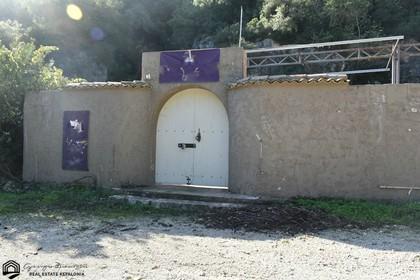 Κατάστημα 2.500τ.μ. πρoς ενοικίαση-Κεφαλονιά » Έρισος