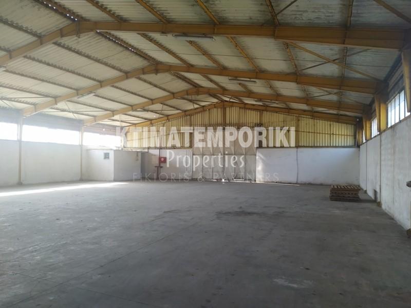 Βιομηχανικός χώρος 1.200τ.μ. πρoς ενοικίαση-Οινόφυτα » Άγιος θωμάς