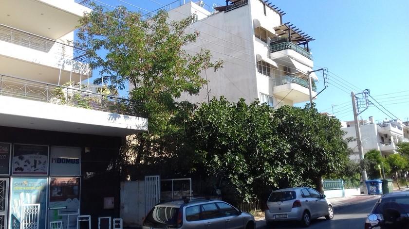 Οικόπεδο 320τ.μ. πρoς αγορά-Άγιος δημήτριος » Ανθέων