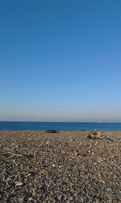 Οικόπεδο 26.000τ.μ. πρoς αγορά-Λέσβος - καλλονή