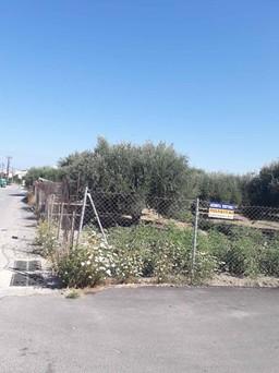 Οικόπεδο 400τ.μ. πρoς αγορά-Ηράκλειο κρήτης » Καινούρια πόρτα