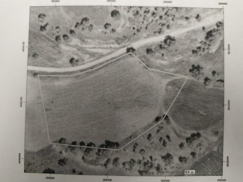 Αγροτεμάχια 7.376τ.μ. πρoς ενοικίαση-Θεόδωρος ζιάκας » Ζάκας