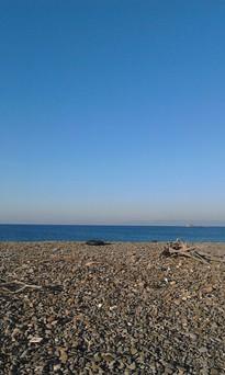 Οικόπεδο 8.500τ.μ. πρoς αγορά-Λέσβος - ερεσός