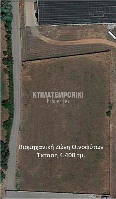 Αγροτεμάχια 4.400τ.μ. πρoς αγορά-Οινόφυτα » Δήλεσι
