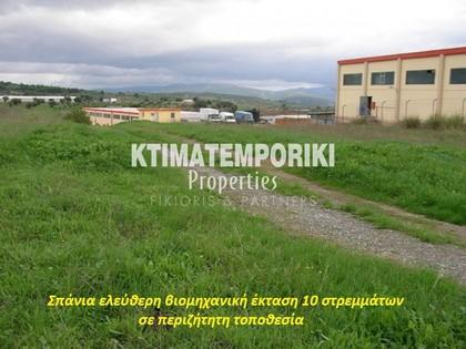 Αγροτεμάχια 10.000τ.μ. πρoς αγορά-Οινόφυτα » Άγιος θωμάς