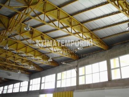 Βιομηχανικός χώρος 5.000τ.μ. πρoς ενοικίαση-Οινόφυτα » Άγιος θωμάς