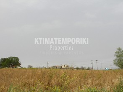 Αγροτεμάχια 5.700τ.μ. πρoς αγορά-Σχηματάρι » Οινόη