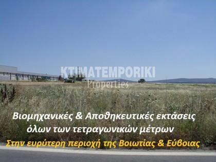 Αγροτεμάχια 10.000τ.μ. πρoς αγορά-Αυλίδα » Ριτσώνα