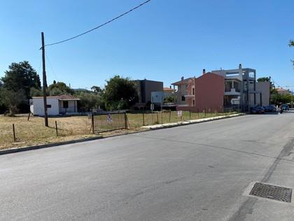Οικόπεδο 1.836τ.μ. πρoς αγορά-Βόλος » Καραγάτς