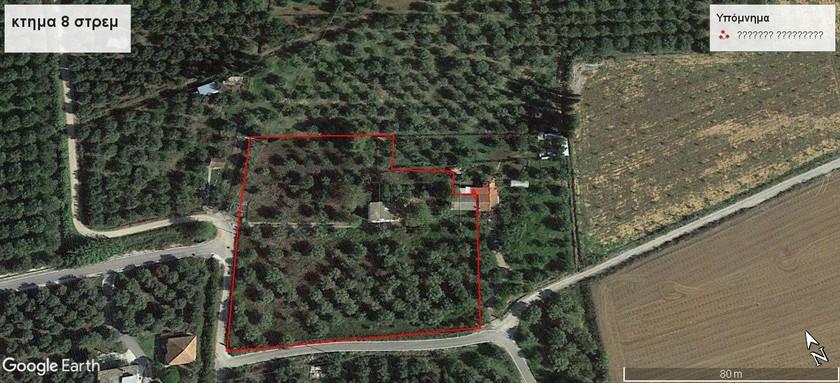 Αγροτεμάχια 8.000τ.μ. πρoς ενοικίαση-Ιερά πόλη μεσολογγίου » Ζεστή