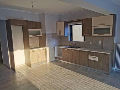 Διαμέρισμα 104τ.μ. πρoς ενοικίαση-Ωρεοί » Κέντρο