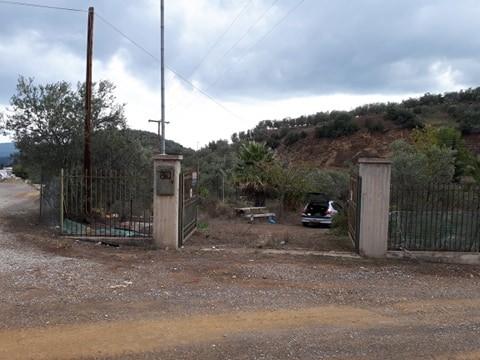 Οικόπεδο 3.002τ.μ. πρoς αγορά-Επίδαυρος » Νέα επίδαυρος