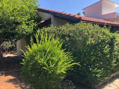 Μονοκατοικία 92τ.μ. πρoς αγορά-Νέα μάκρη » Αγία μαρίνα νέας μάκρης
