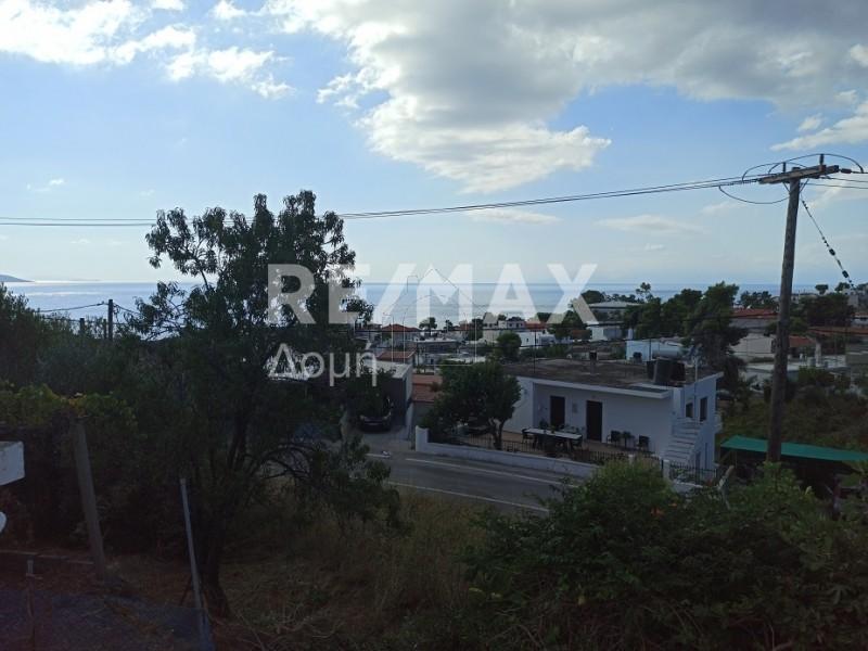 Οικόπεδο 407τ.μ. πρoς αγορά-Αλόννησος » Πατητήρι