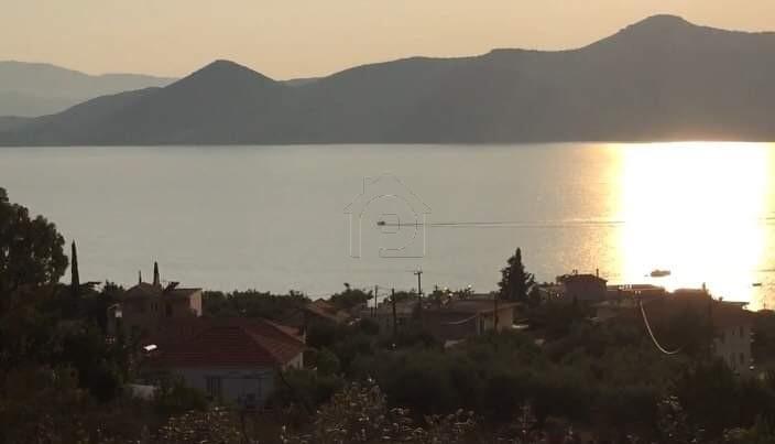 Οικόπεδο 2.024τ.μ. πρoς αγορά-Κεκροπία (παλαίρου) » Πάλαιρος