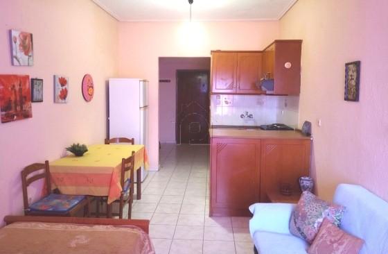 Studio / γκαρσονιέρα 33τ.μ. πρoς ενοικίαση-Λάρισα » Νεράιδα