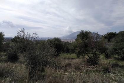 Οικόπεδο 8.600τ.μ. πρoς αγορά-Γέρακας » Δέση