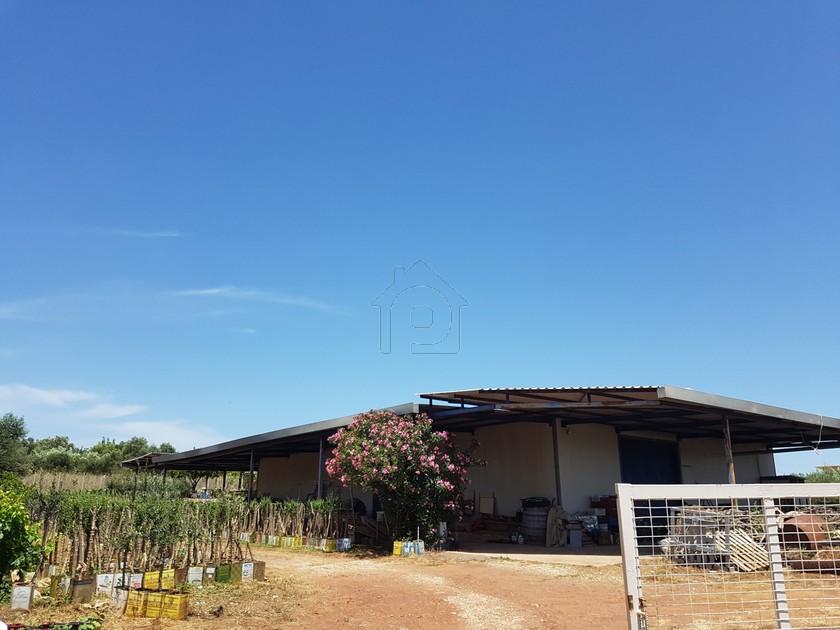 Βιομηχανικός χώρος 350τ.μ. πρoς ενοικίαση-Πεταλίδι » Τζάνες