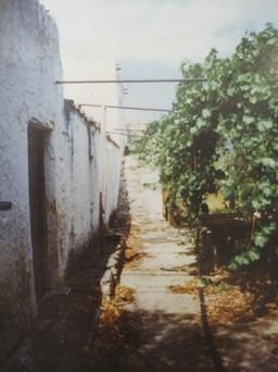 Οικόπεδο 11.878τ.μ. πρoς αγορά-Μονεμβασιά » Άγιος στέφανος