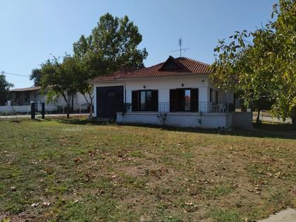 Μονοκατοικία 112τ.μ. πρoς ενοικίαση-Άγιος αθανάσιος » Ξηροχώρι