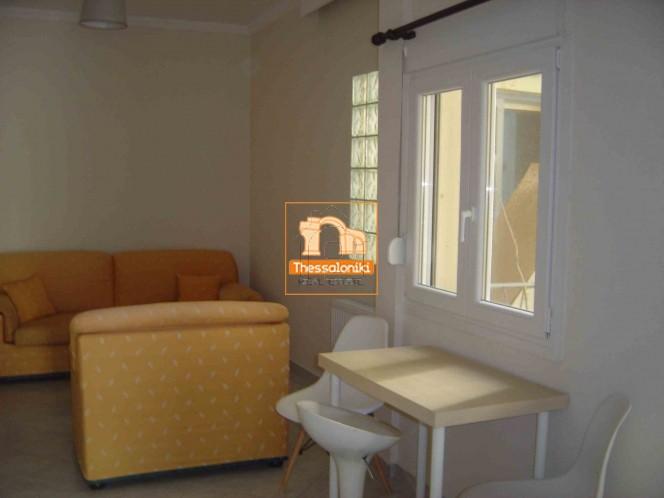 Studio / γκαρσονιέρα 48τ.μ. πρoς ενοικίαση-Αριδαία » Χρύσα