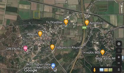 Αγροτεμάχια 10.000τ.μ. πρoς αγορά-Φανάρι » Βαλανιδόραχη