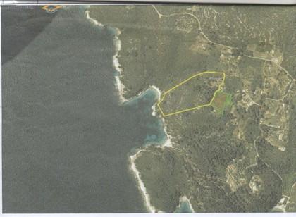 Οικόπεδο 38.000τ.μ. πρoς αγορά-Παξοί » Αντίπαξος