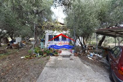 Μονοκατοικία 120τ.μ. πρoς αγορά-Αλεξανδρούπολη » Δίκελλα