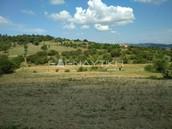 Αγροτεμάχια 500 τ.μ. πρoς αγορά