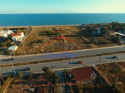Αγροτεμάχια 2.158τ.μ. πρoς αγορά-Αλεξανδρούπολη » Νέα χιλή