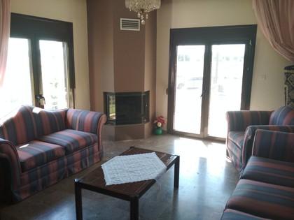 Διαμέρισμα 50τ.μ. πρoς ενοικίαση-Τρίκαλα » Κέντρο