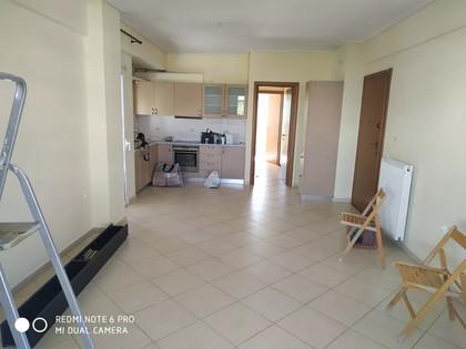 Διαμέρισμα 56τ.μ. πρoς ενοικίαση-Παλλήνη » Κέντρο