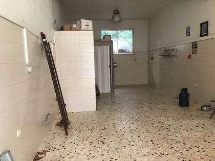 Άλλο 65τ.μ. πρoς ενοικίαση-Παλαιό φάληρο » Κοψαχείλα