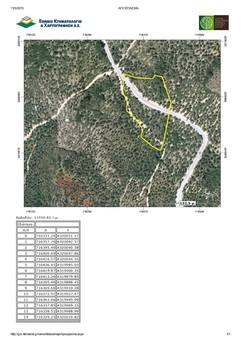 Αγροτεμάχια 12.000τ.μ. για αγορά-Λέσβος - γέρας