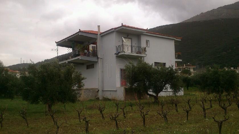 Μονοκατοικία 100τ.μ. πρoς ενοικίαση-Κυπαρισσία » Ρουζάκι