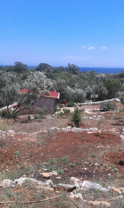 Αγροτεμάχια 1.000 τ.μ. πρoς ενοικίαση, Λακωνία, Ανατολική Μάνη
